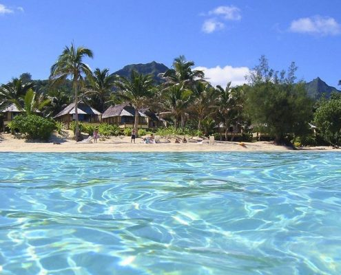 Palm Grove, Cook Islands - Looking Onto Shore