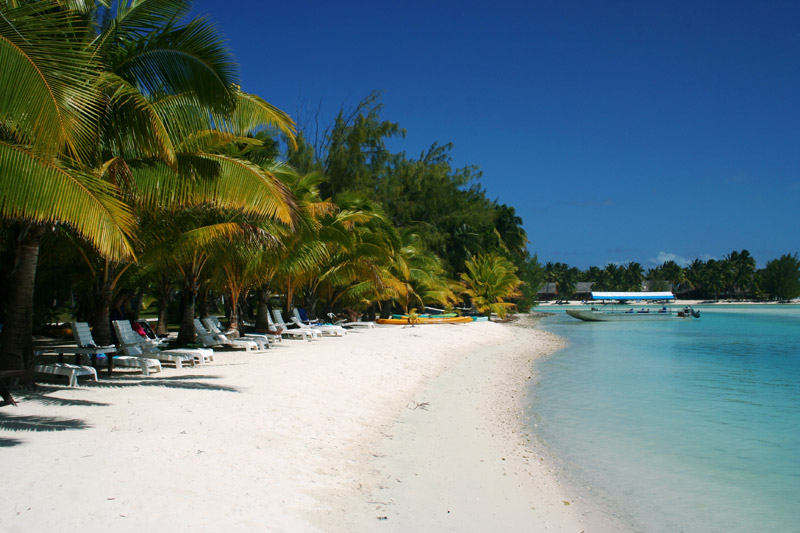 Samade on the Beach, Cook Islands - Beachfront